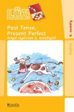 Past Tense, Present Perfect